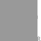 Prana Schmiede Logo